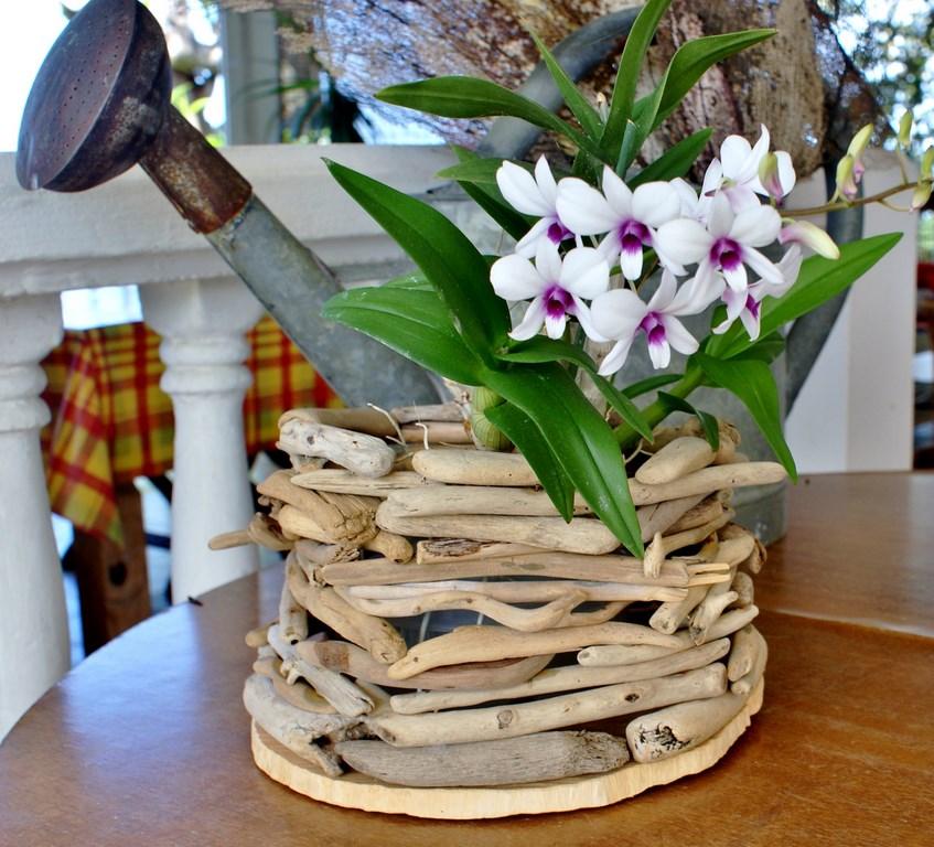 cache pot en bois flott la cabane nature. Black Bedroom Furniture Sets. Home Design Ideas